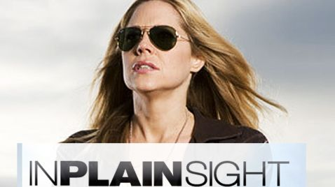 In Plain Sight - In der Schusslinie