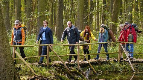 Mit Burnout durch den Wald