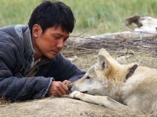 Der letzte Wolf | TV-Programm Sky Cinema