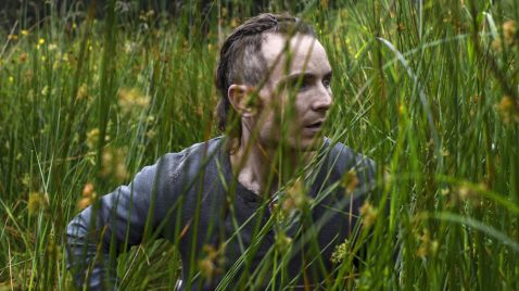 The Survivalist auf Silverline