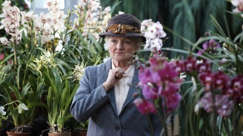 Agatha Christies Marple | TV-Programm One